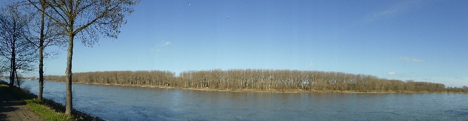 Rheinisches Ortsrecht